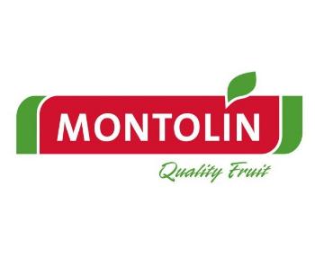 Agricola Montolin