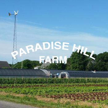 PARADISE HILL FARM