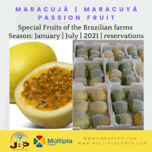 Maracuyá | Passion Fruit | Maracujá