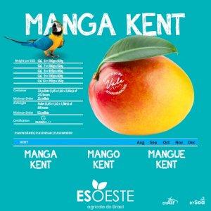 Mangoes Kent