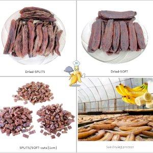 Solar Sun Dried Banana & Banana Snacks