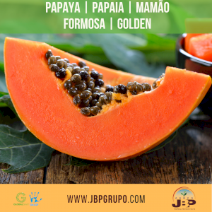 Papaya | Papaia | Mamão Formosa e Golden