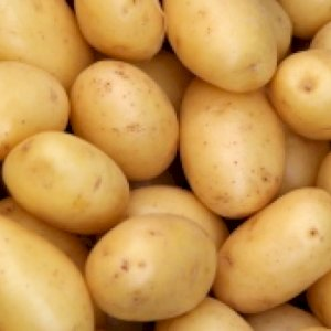 Potato from fresh crop