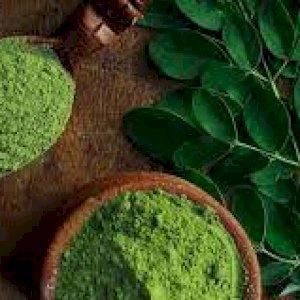 Moringa Powder and seed