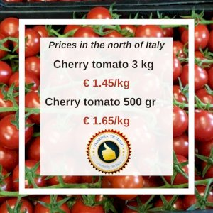 CHERRY TOMATO (on the vine) FROM SICILY