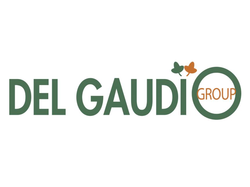 DEL GAUDIO FRANCE