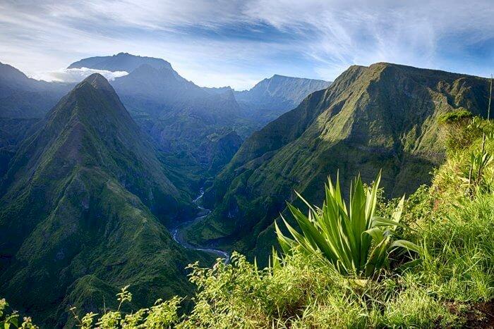 La Réunion renonce à exporter ses Mangues Pei