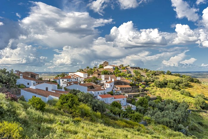 Portugal, soon the best olive oil?