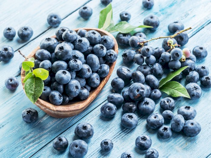 Blueberry season review