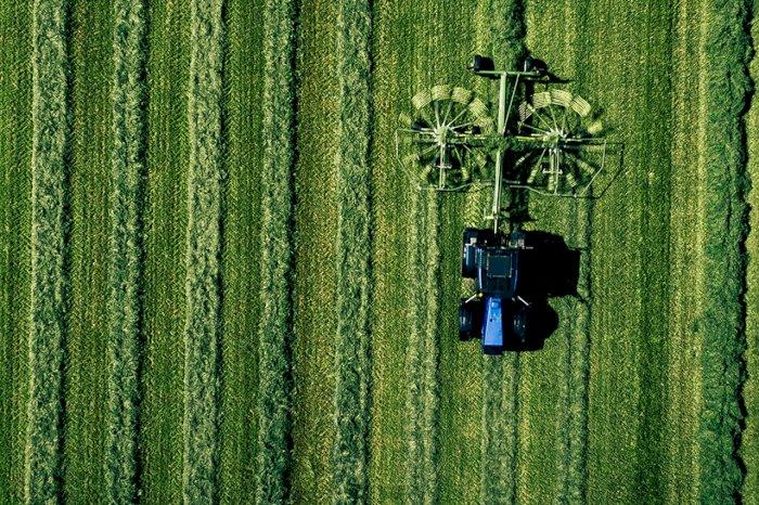 AREFLH et Freshfel Europe examinent les principaux défis à venir pour le secteur européen des fruits et légumes à l'occasion de leur événement commun.