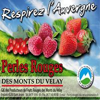 FRUITS ROUGES DU VELAY