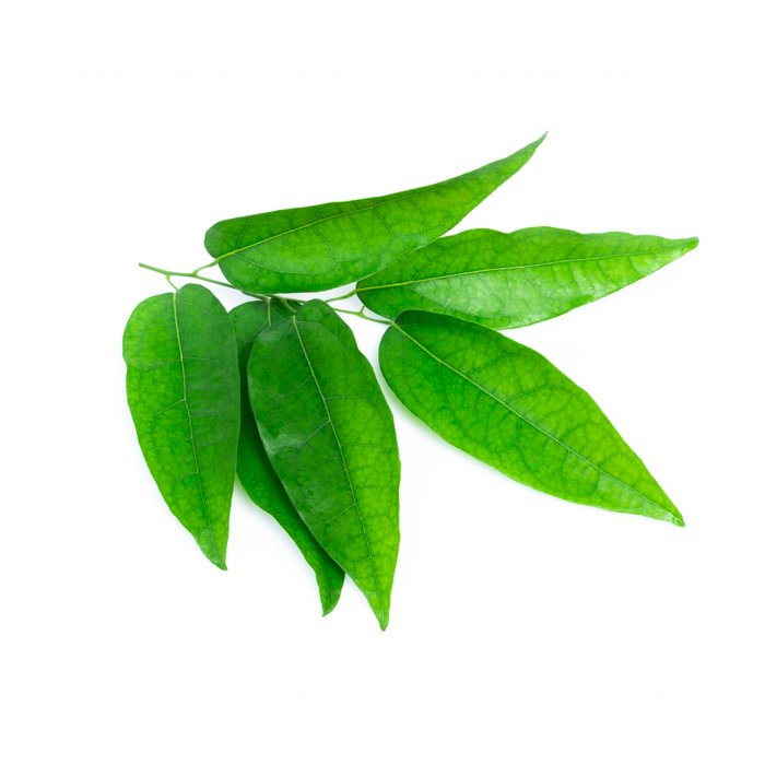Yanang Leaves