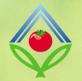 Agrofirma Oldeevskaya