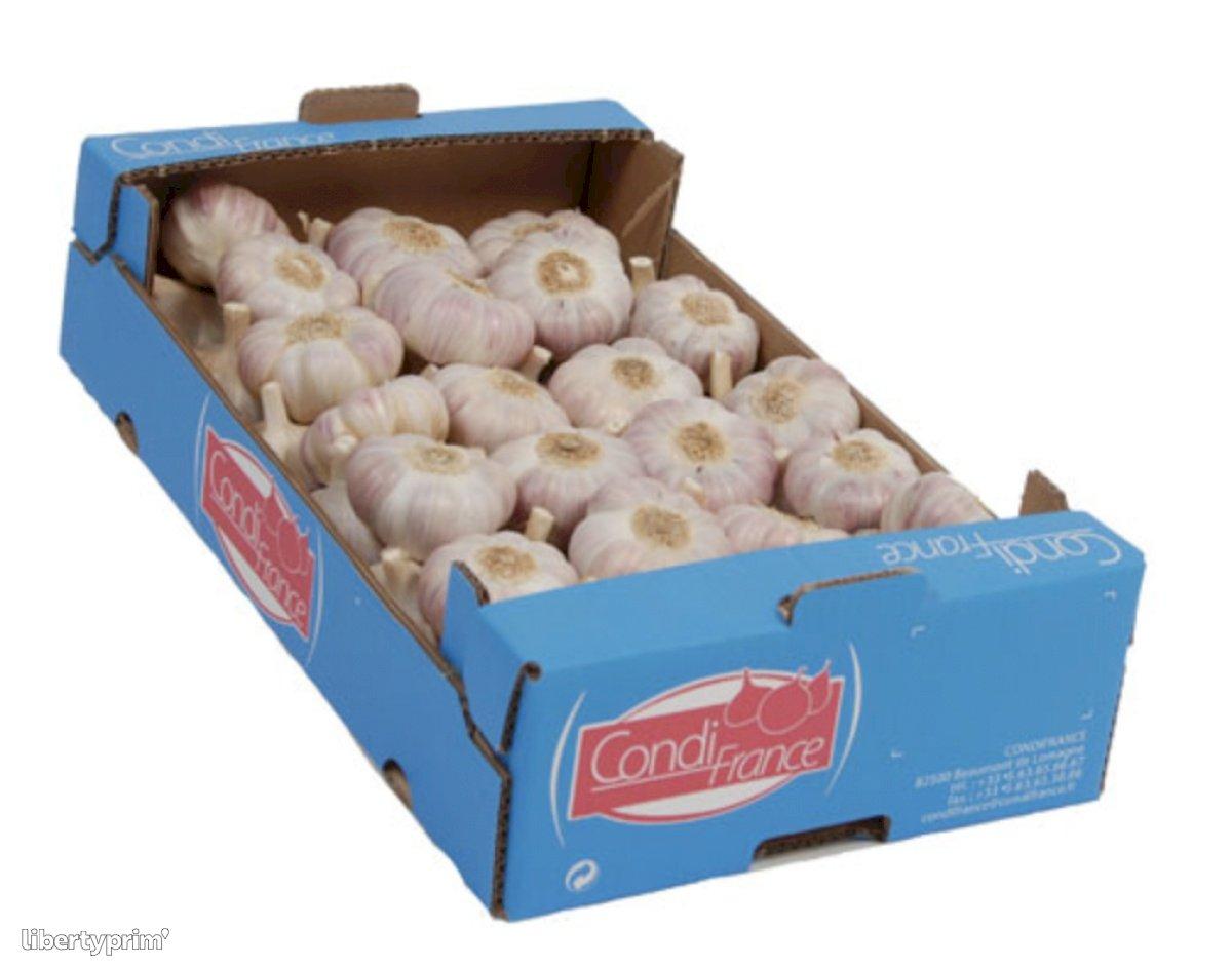Garlic Pink Class 1 France Shipper - CONDIFRANCE | Libertyprim