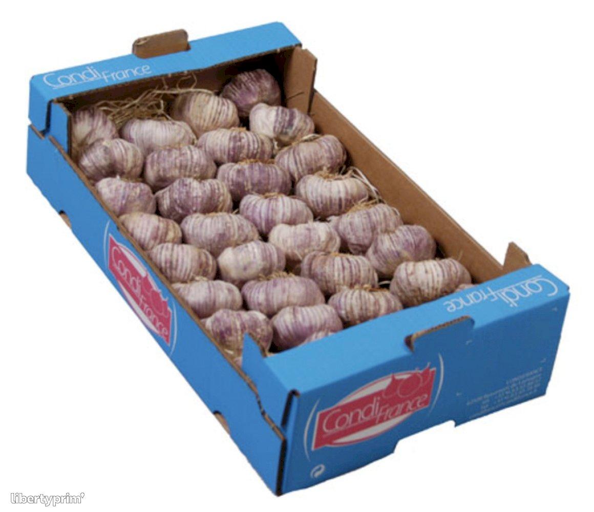 Garlic Purple Class 1 France Shipper - CONDIFRANCE | Libertyprim