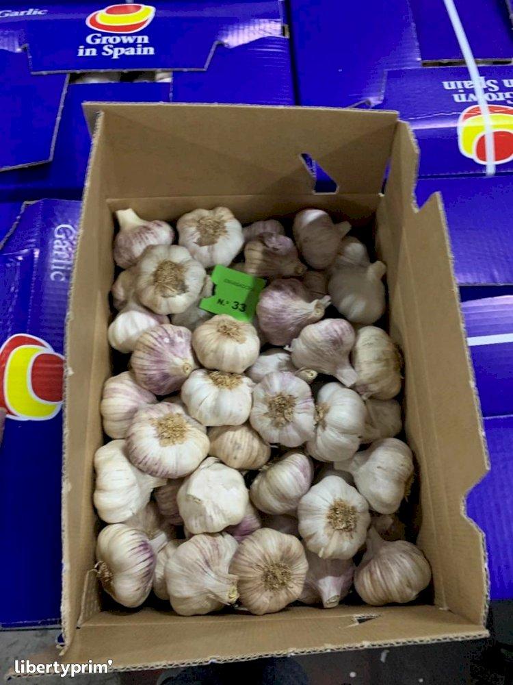 Garlic Purple Class 1 Spain Exporter - SybarisMarket   Libertyprim