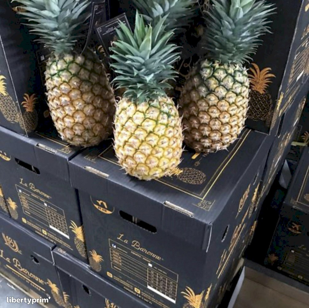 Pineapple Class 1 Ghana Importer - LA-BARONNE | Libertyprim