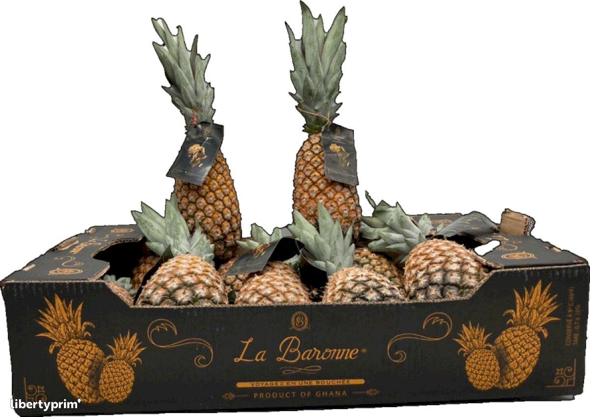 Pineapple Sugarloaf Ghana Importer - LA-BARONNE | Libertyprim