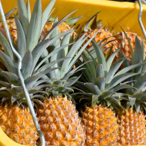 Pineapple Victoria