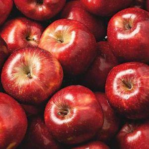 Apple American Red