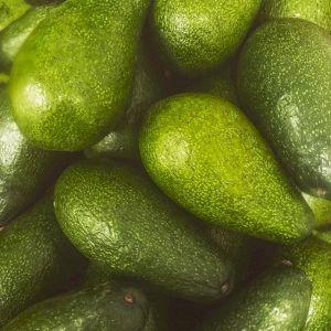 Avocado Ettinger