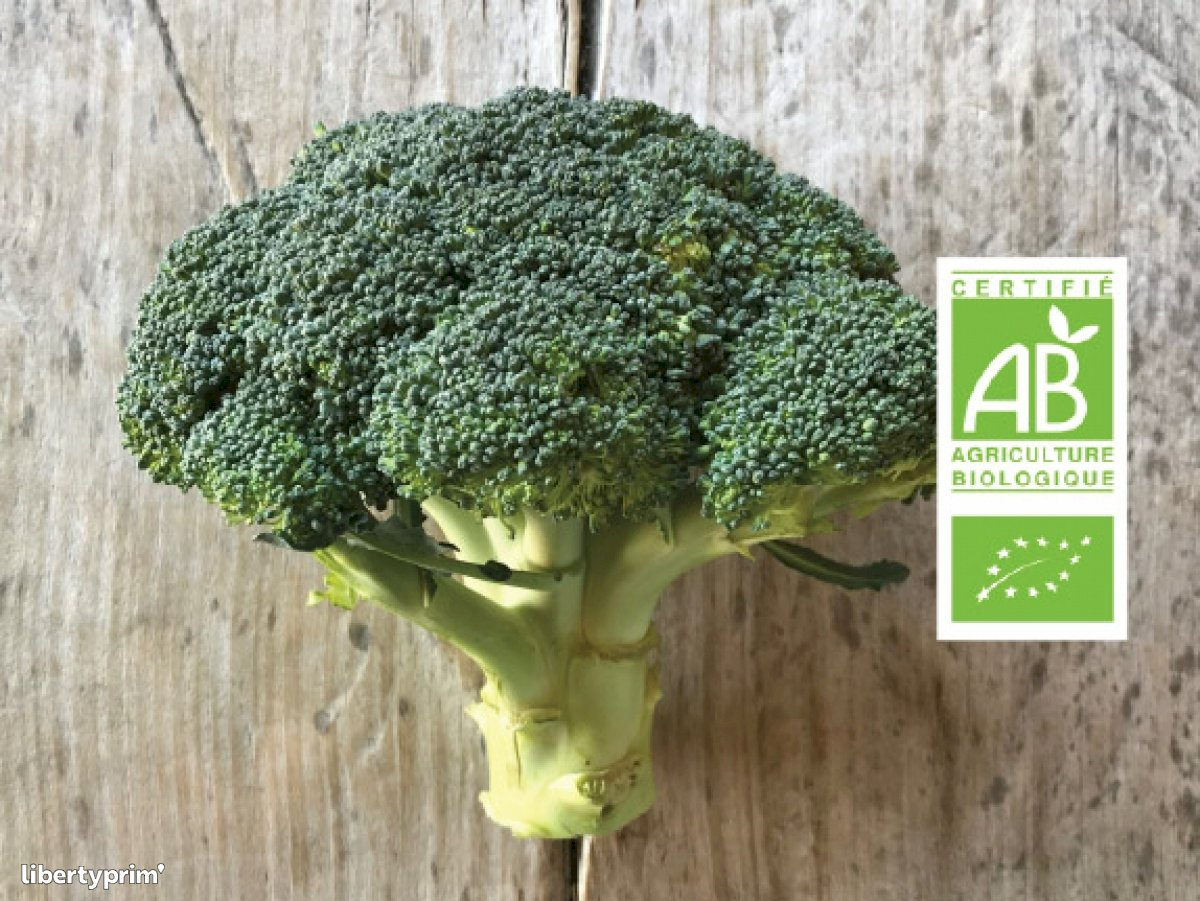 Broccoli France Shipper - FORT&VERT | Libertyprim