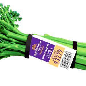 Broccoli Chinese