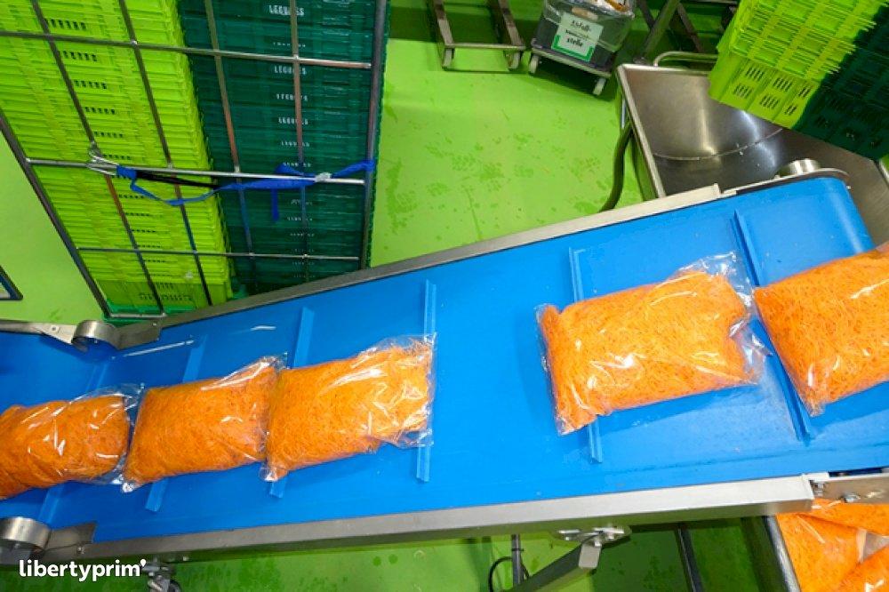 Carrot Processor - Légumes Rapp   Libertyprim