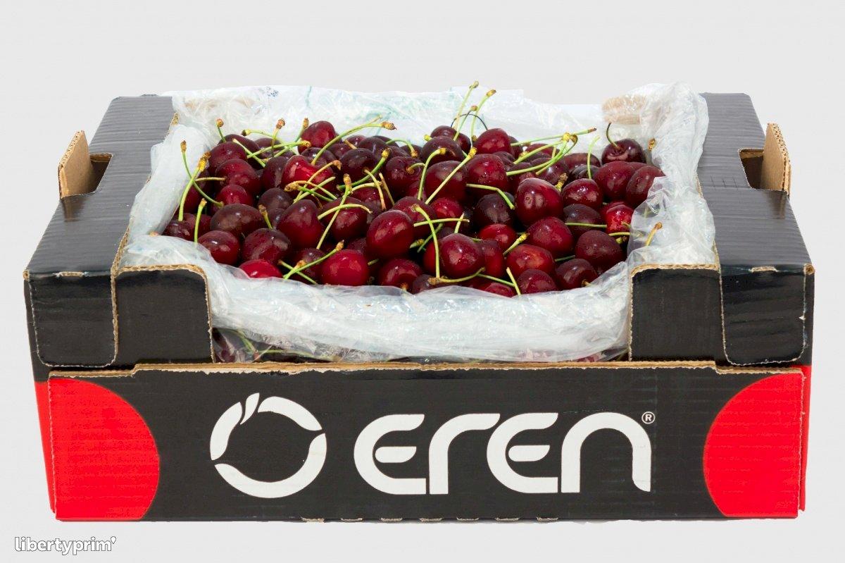 Cherry Class 1 Turkey Exporter - Eren | Libertyprim