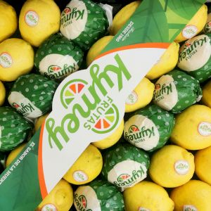 Citron Primofiore