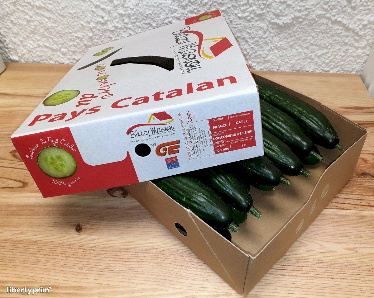 Cucumber Dutch Class 1 France Distributor - guillem66 | Libertyprim