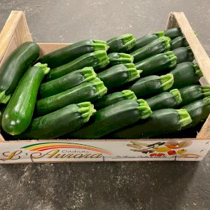 Zucchini Long Green