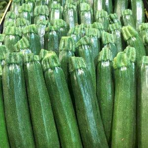 Zucchini Long Green