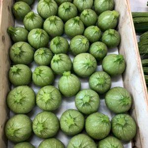 Zucchini Green Round