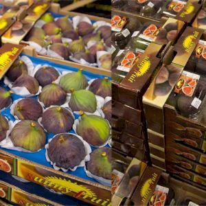Fig Turkey AC