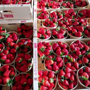 Strawberry Cléry