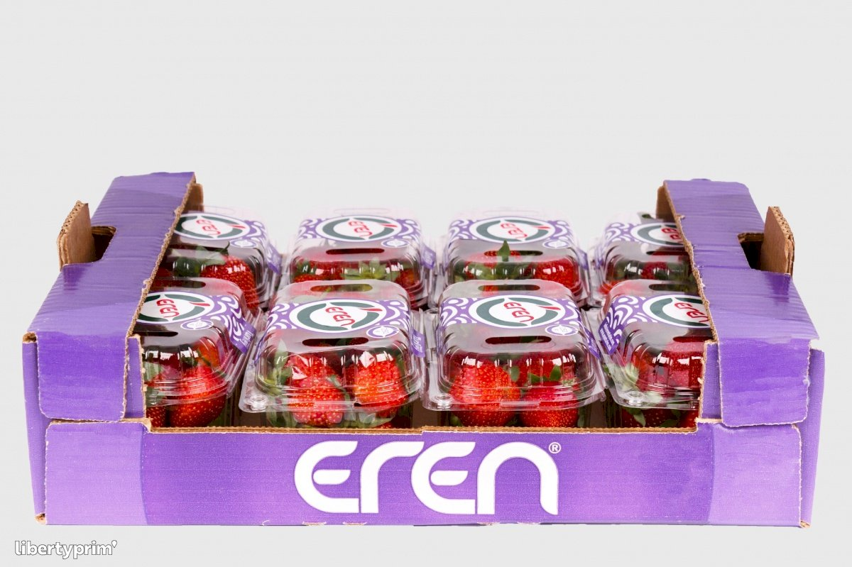 Strawberry Fortuna Class 1 Turkey Exporter - Eren | Libertyprim