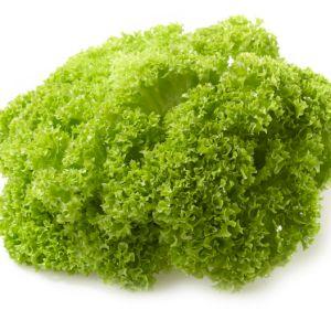 Lettuce Lollo (Green)