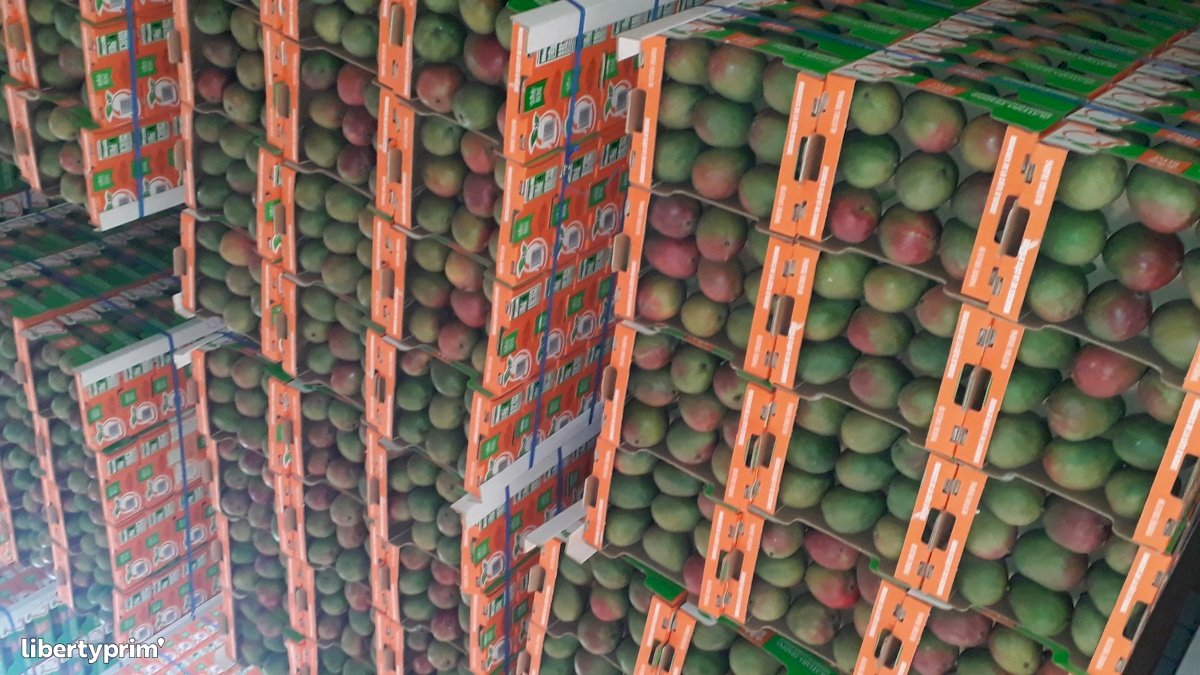 Mangue Kent Extra Côte D'Ivoire Exportateur - Idriss | Libertyprim