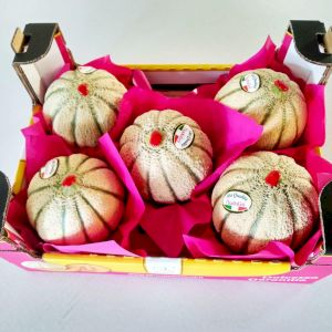 Melon Ha'Ogen