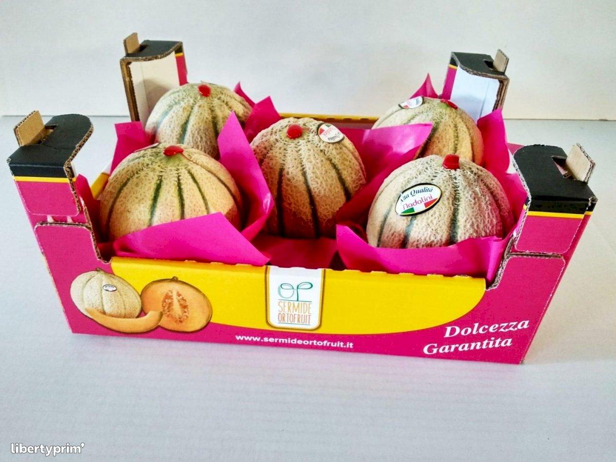 Melon Brodé Catégorie 1 Italie Producteur Conventionnel - Peruzzo | Libertyprim