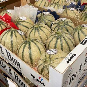 Melon Green Charentais
