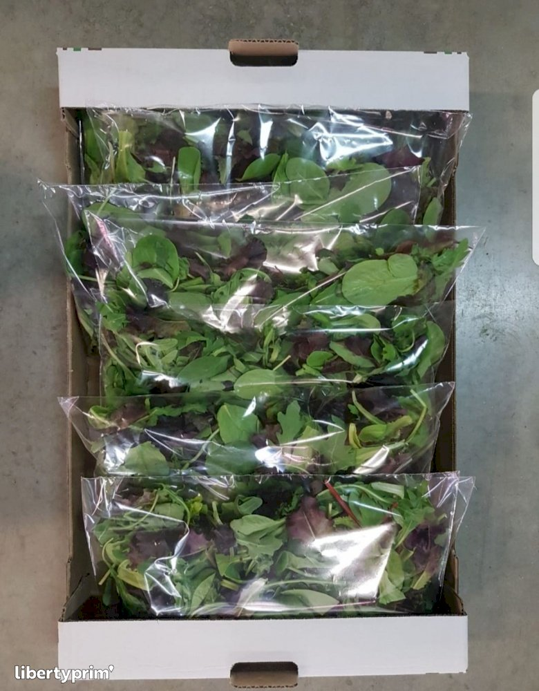 Mixed Greens Extra Italy Exporter - florianomirra | Libertyprim