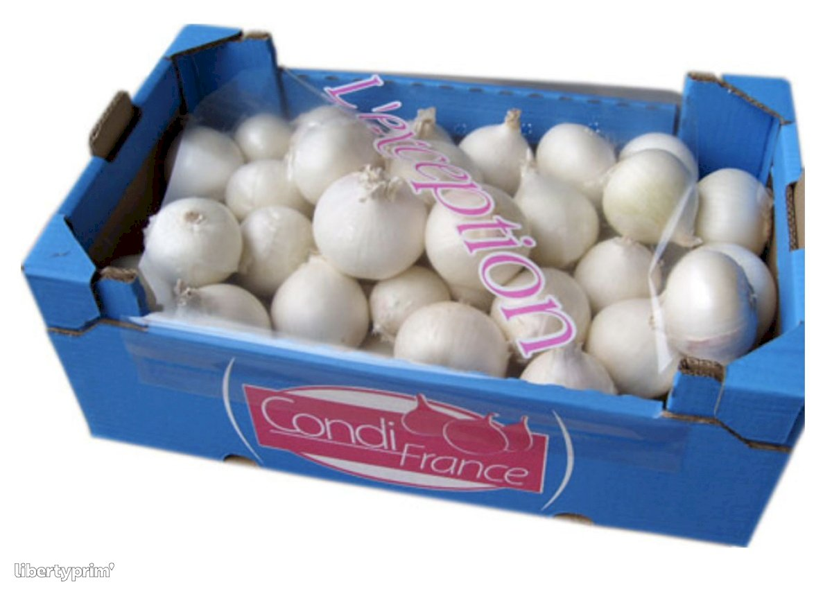 Onion White Class 1 Spain Shipper - CONDIFRANCE | Libertyprim