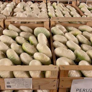 Onion White Italian