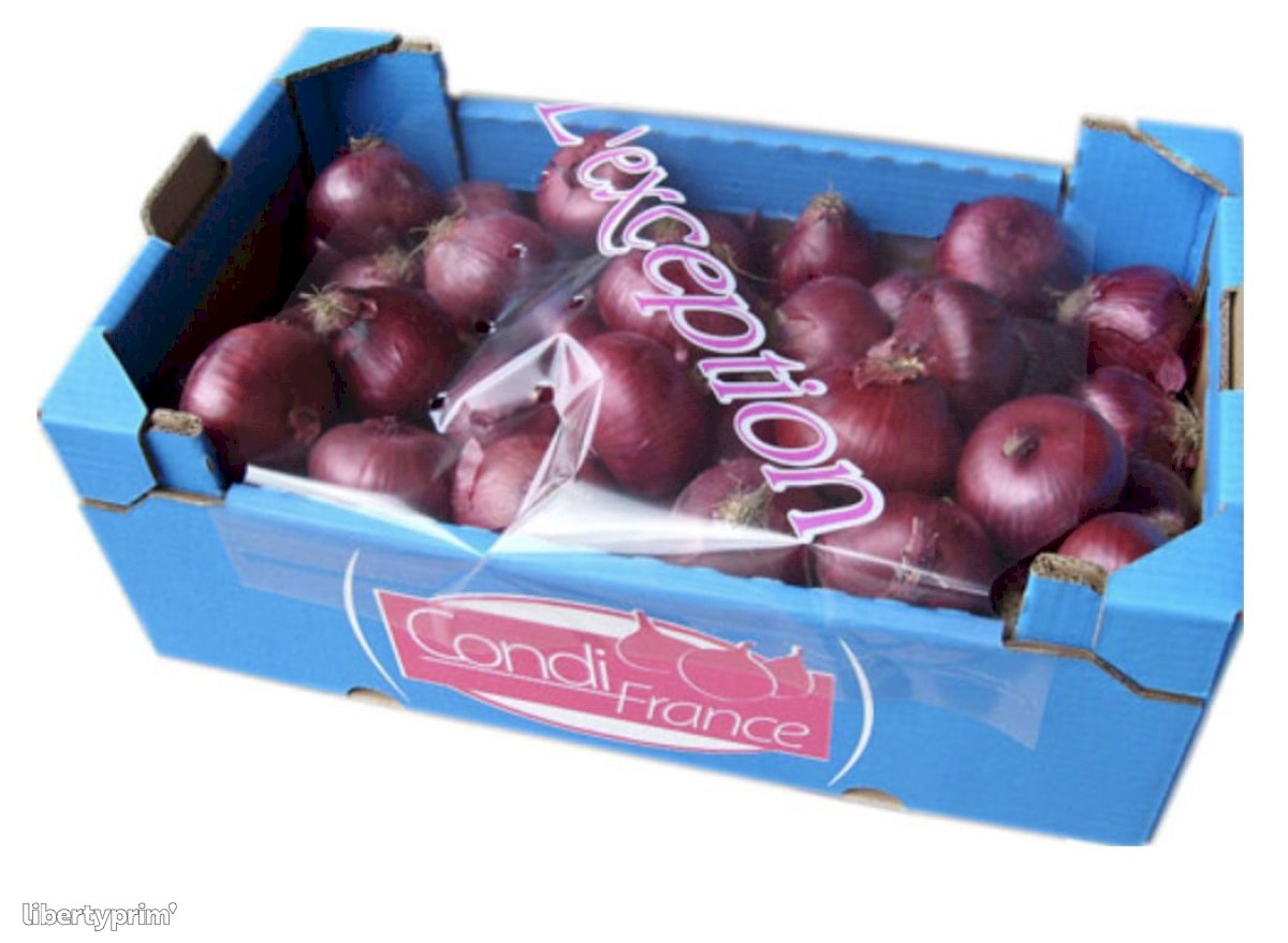 Onion Red Class 1 Spain Shipper - CONDIFRANCE | Libertyprim