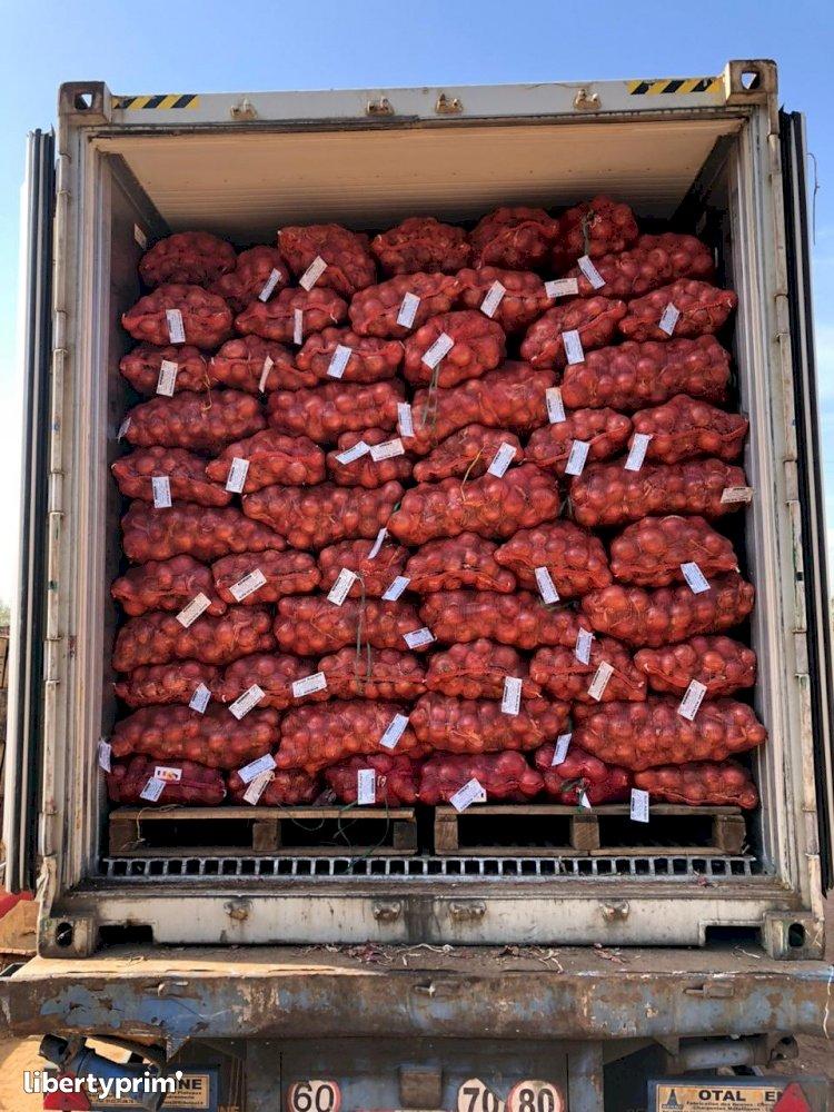 Onion Red Class 1 Morocco Import/export - agro77 | Libertyprim