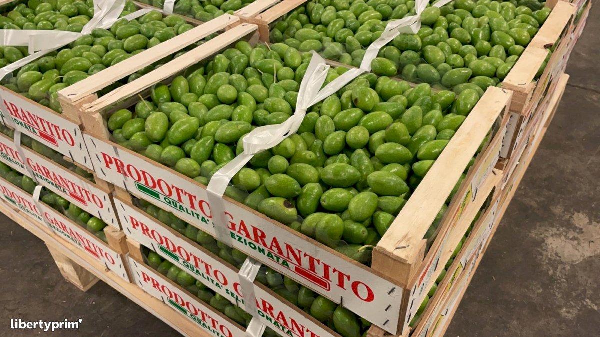 Olive Extra Italy Conventional Grower - Peruzzo | Libertyprim