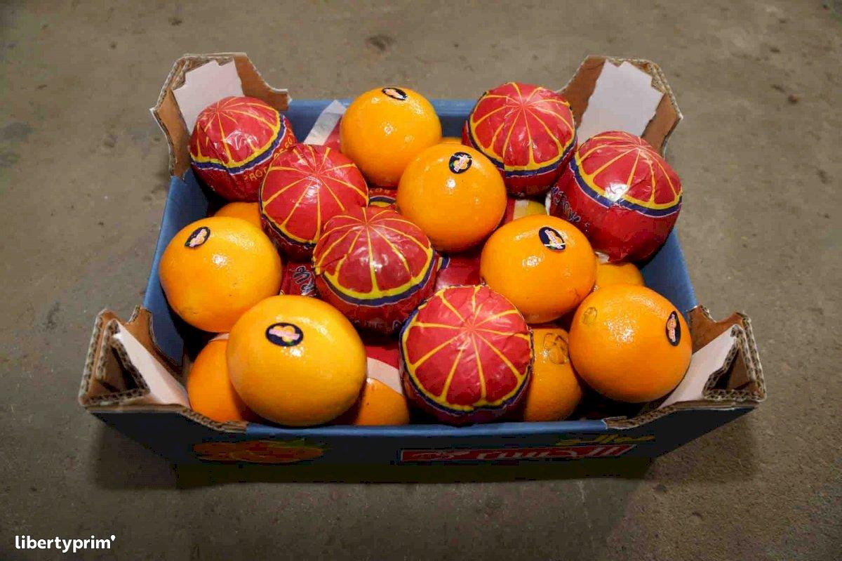 Arancione Navel Categoria 1 Egitto Esportatore - AL HASSAN | Libertyprim