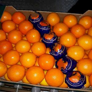 Arancione Naveline